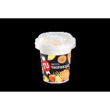 Troopiline šerbetijäätis, külmutatud, 150ml/100g/22tk (-18C)